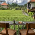 best places to eat Ubud