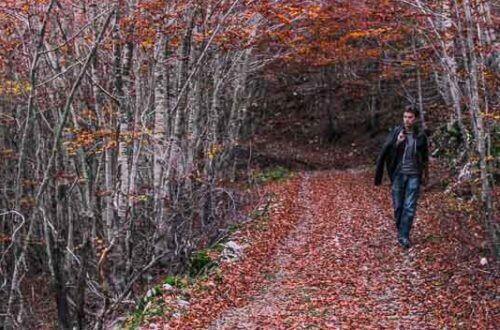 Lovcen national park hiking