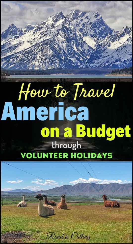 In this guide I am sharing details on volunteer holidays in America, as one of the most affordable ways to travel the USA on a budget. If you are looking to save money when exploring America, give this post a read! #budgettravel #americaonabudget #USA
