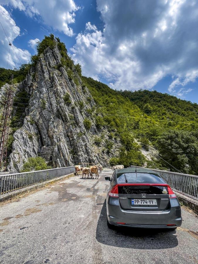 rent a car in Georgia country