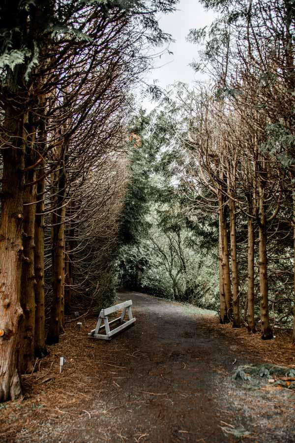 nature in Oregon