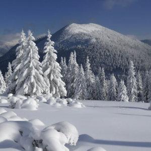 skiing in Ukraine