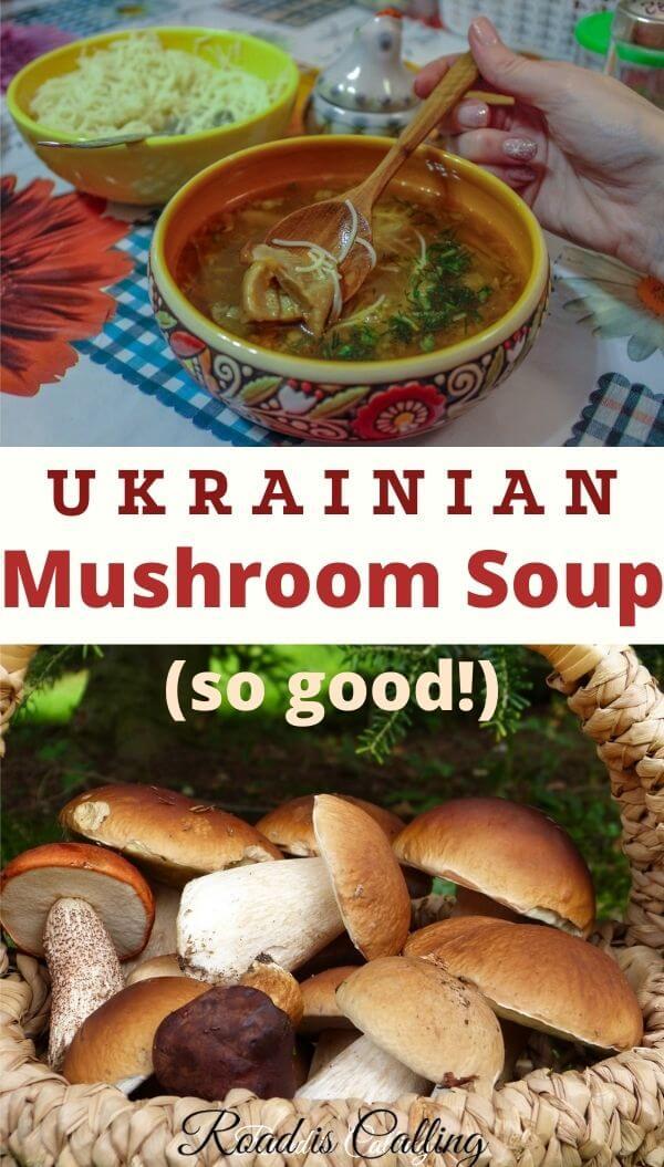 Ukrainian porcini mushroom soup