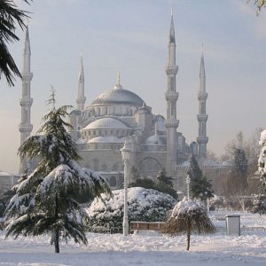 Turkey in January